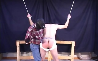 tied & fucked - pig dad productions